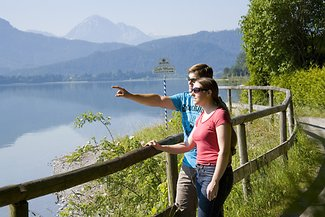 Rad-/Wanderweg am Forggensee
